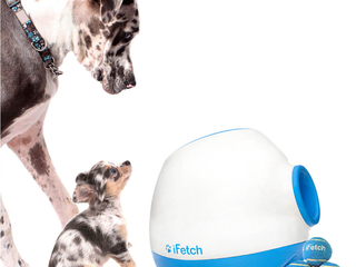 iFetch Automatic Ball Launcher - Large - iFETCH-TOO